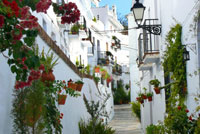 Typical Andalusian Street Frigiliana